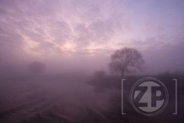 Velen klagen over de mist, waardoor files zijn ontstaan en het vliegverkeer praktisch stil ligt. Maar het levert ook mooie foto's op, zoals deze door Patrick van Gemert.
