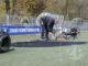 Kunstgrasveld transplantatie na brandstichting bij de Warnsveldse Boys, met een slijptol wordt het aangetaste deel uit de grasmat gesneden. Foto: Patrick van Gemert / Patrick van Gemert