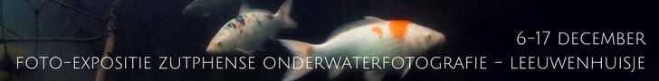 Foto-expositie Zutphense onderwaterfotografie in het Leeuwenhuisje van 6 tot en met 17 december
