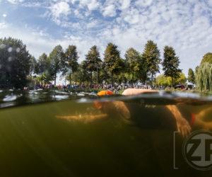 Nominatie Gelders Nieuwsfoto 2018. De 4e Editie van de Triatlon van Zutphen. Zwemmers in de Vispoortgracht. Foto: Patrick van Gemert