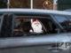 De Sint is weer in het land. In Vorden is er op het bedrijventerrein een Sinterklaas-drivethrough georganiseerd. Kinderen kunnen met hun ouders meerijden om zo te kunnen zwaaien naar de Sint en eventueel een tekening te geven.